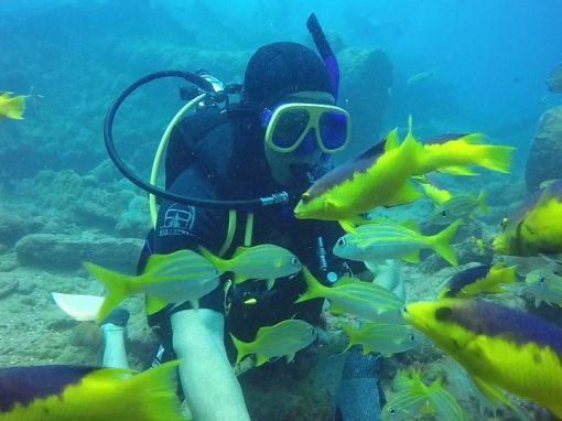 Ocean Eyes: Buceo ConCiencia